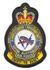 114 Mobile Control & Reporting Unit badge