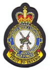 1 Airfield Defence Squadron badge