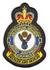 1 Air Terminal Squadron badge