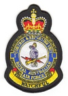 1 Control & Reporting Unit badge