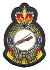 1 Operational Support Unit badge