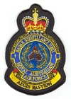 1 Radar Surveillance Unit badge