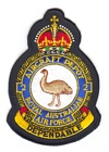 2 Aircraft Depot badge