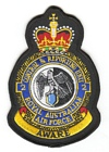 2 Control & Reporting Unit badge