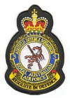 3 Airfield Defence Squadron badge