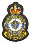 3 Combat Support Hospital badge