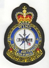 41 Wing badge