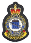 481 Maintenance Squadron badge