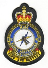 82 Wing badge