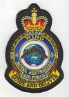 84 Wing badge
