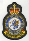 92 Wing badge