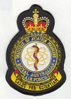 Institute of Aviation Medicine badge