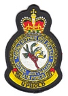Combat Support Unit Pearce badge