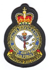 Health Services Wing badge