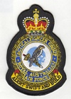 Tactical Fighter Group badge