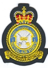 1 Flying Training School badge