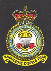 No. 1 Parachute Training School badge