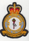 6 Flying Training School badge