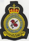 Firefighting & Rescue Service badge