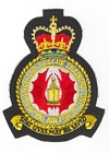 Search & Rescue Training Unit badge