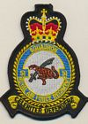 51 Sqn RAF Regiment badge