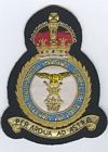 2616 (South Yorkshire) Squadron badge